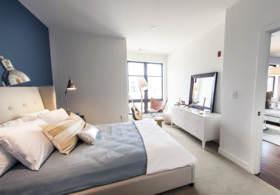 Harvard College Student Blog · Harvard Freshman Housing!